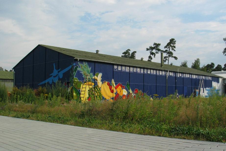 Graffitiauftrag, Graffiti in Freiburg, Freiburg Graffiti, Legales Graffiti, inzoolo, zoolo, professionelles Graffiti, Wandgestaltung, graffity, grafitti,